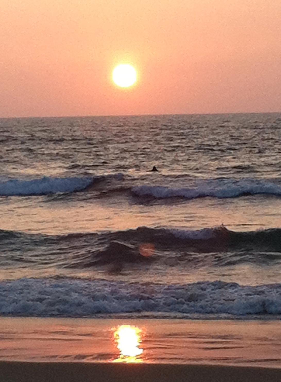 Sunset surfer, lying in wait