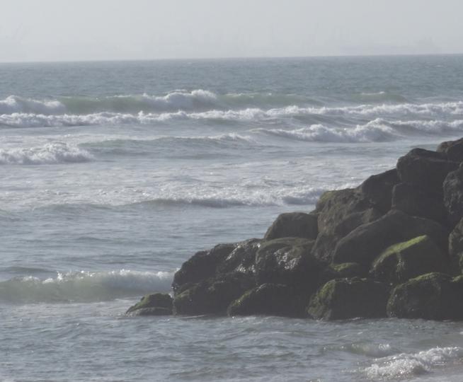 bolsa-chica-ocean-view