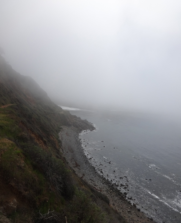 fog-hugging-coast