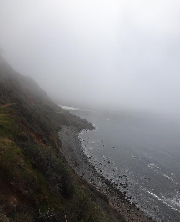 fog-hugging-coast