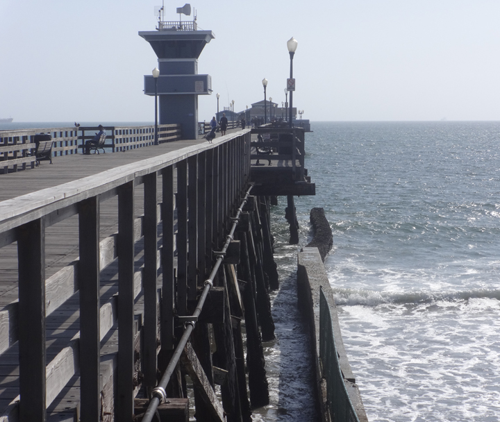 pier-guard-action-seal-beach