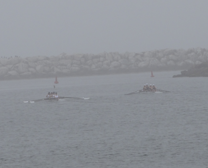 rowing-crew-foggy-day-marina
