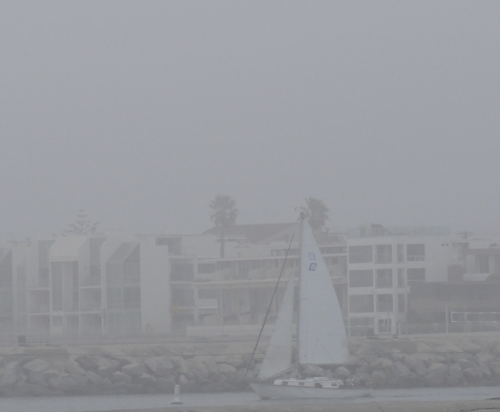 sailing-through-the-fog-marina