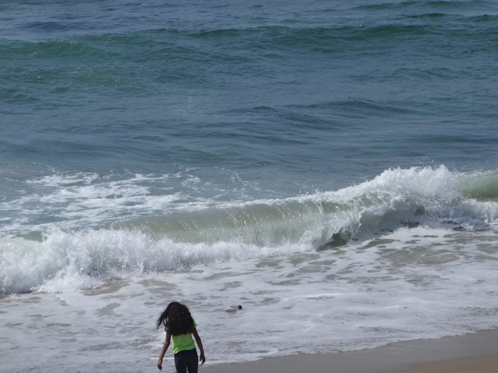 st-patricks-day-hermosa-surf