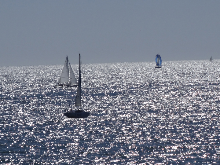 sun-water-sailboats-redondo