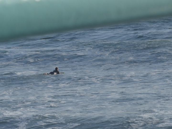 manhattan-pier-view-surfer