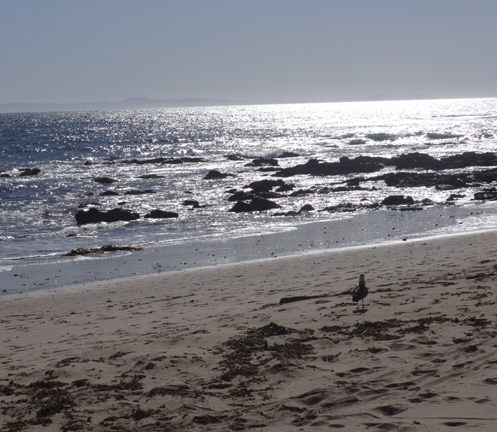 solace-in-beauty-crystal-cove