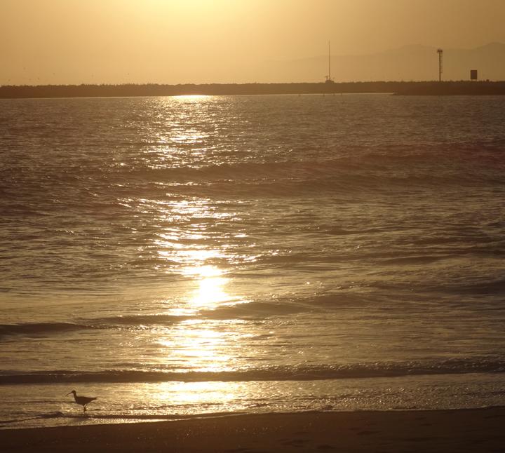 sunset-playa-april-2013
