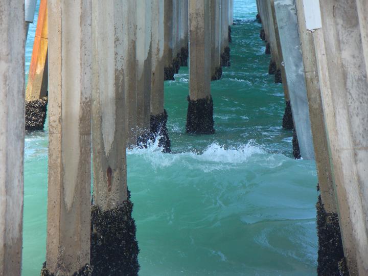 barnacles-pier