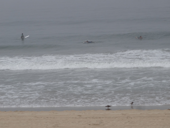 foggy-surf-day