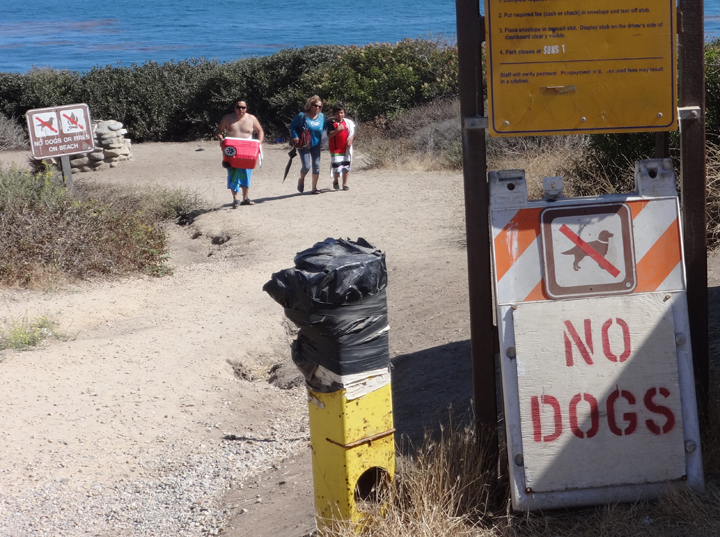 no-dogs-malibu-signs