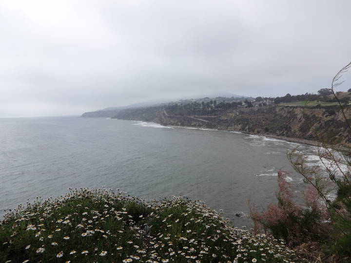 point-fermin-ocean-view-san-pedro