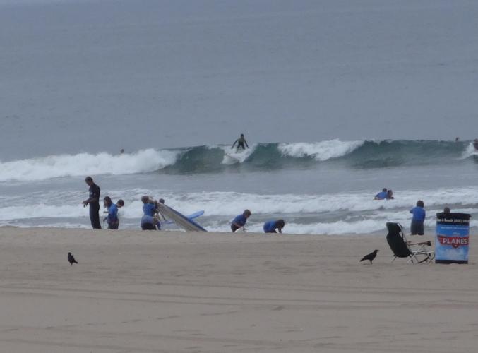 surf-class-el-porto-with-birds