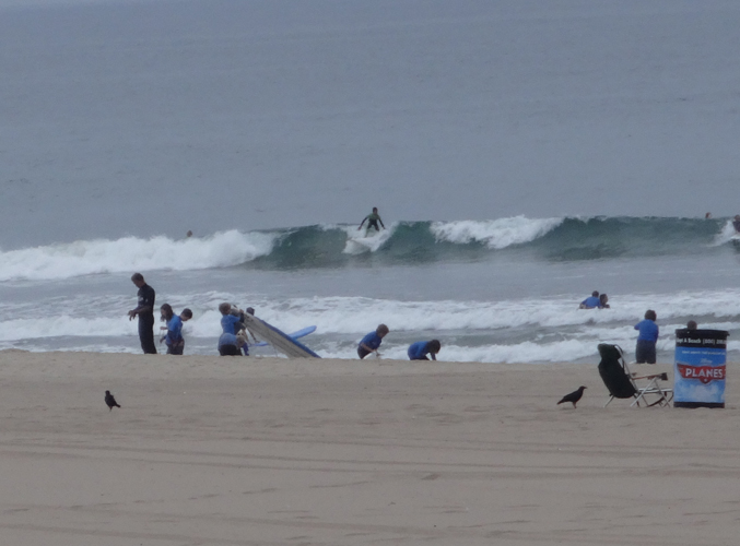 surf-class-el-porto-with-birds