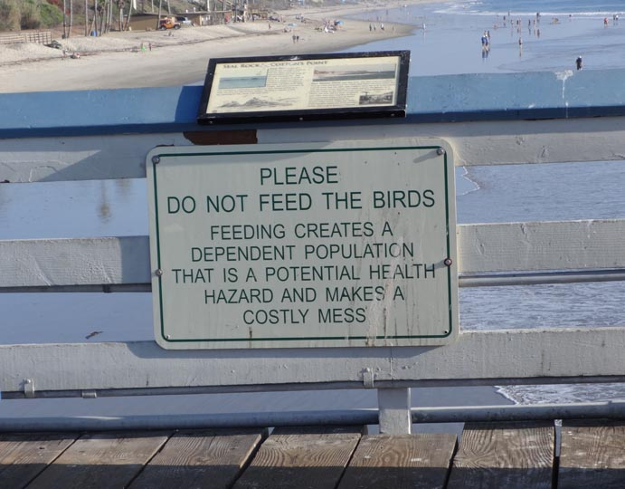 birds-mess-sign-san-clemente