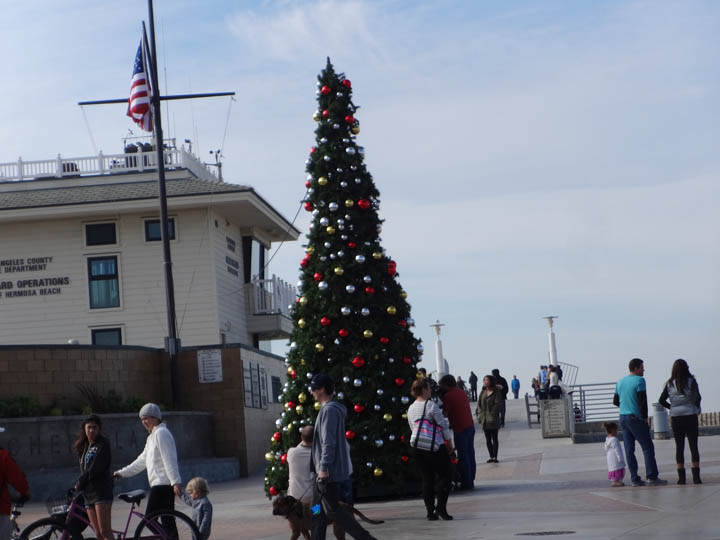 christmas-tree-hermosa-2013