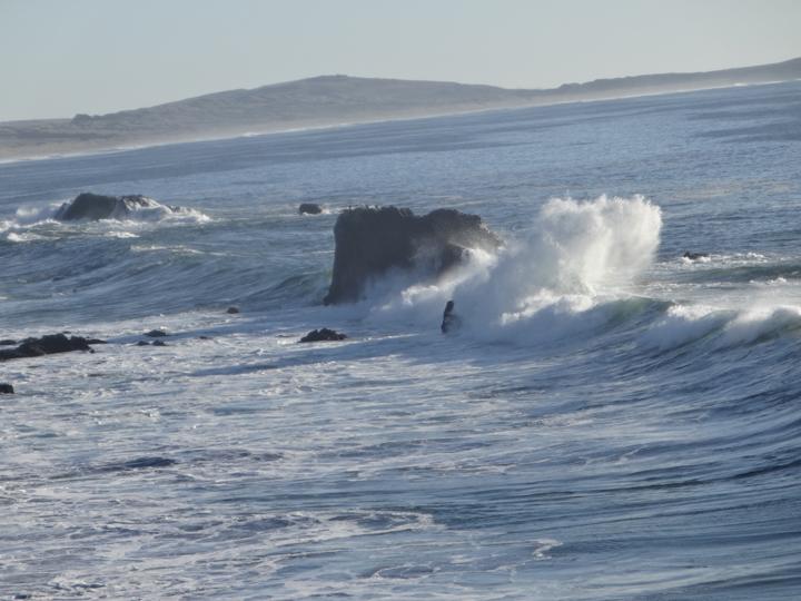 portuguese-beach-sonoma