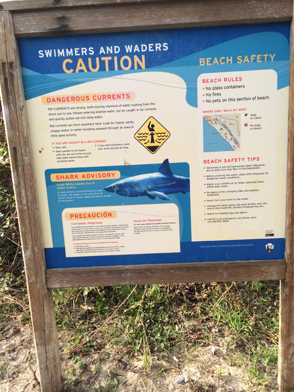 stinson-beach-shark-warning-sign