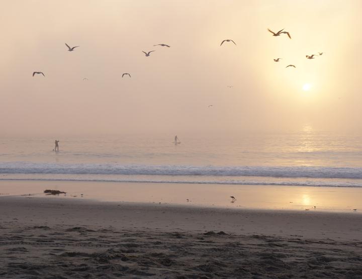 through-the-fog-near-sunset
