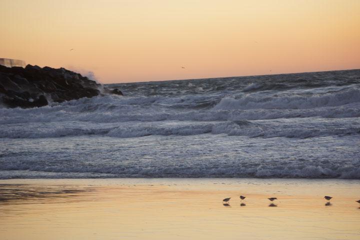 herondo-windy-sunset