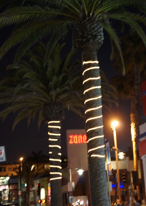 zanes-night-hermosa-palm-trees-may