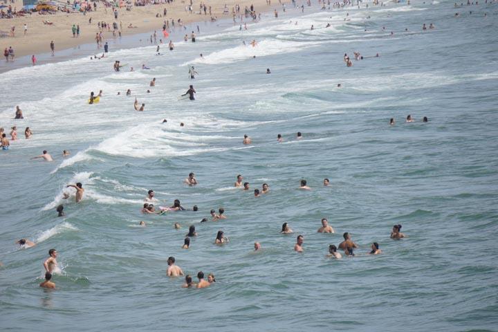 manhattan-beach-swimmers-after-shark