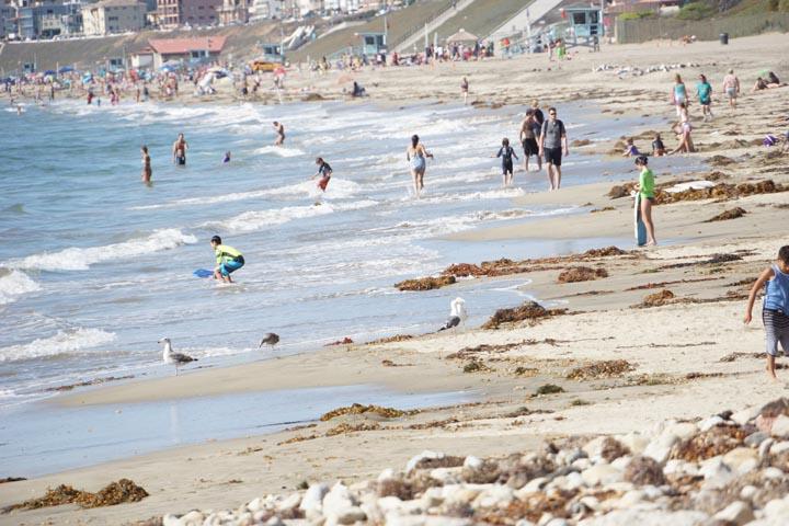 rat-beach-scene-sunday-july