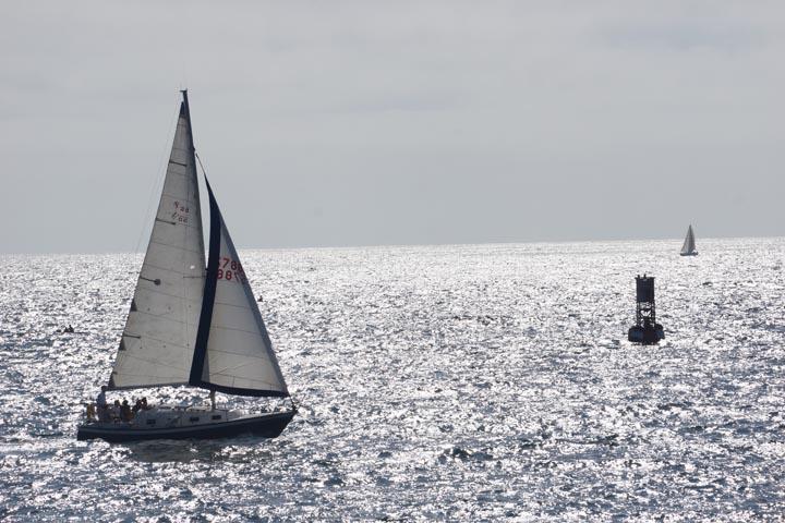 sailboats-redondo-harbor-sunday-august