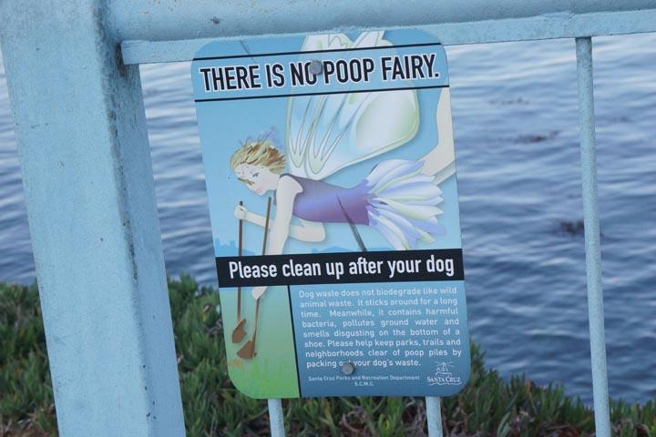 no-poop-fairy-santa-cruz
