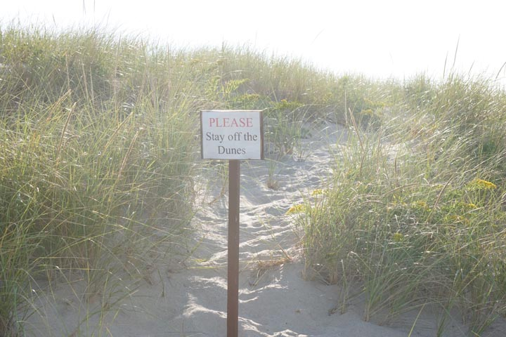 provincetown-stay-off-dunes