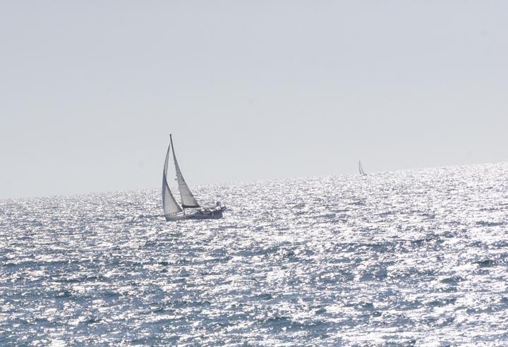 sailing-through-saturday-hermosa