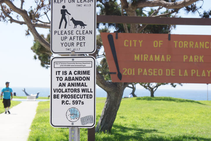 crime-abandon-animals-torrance