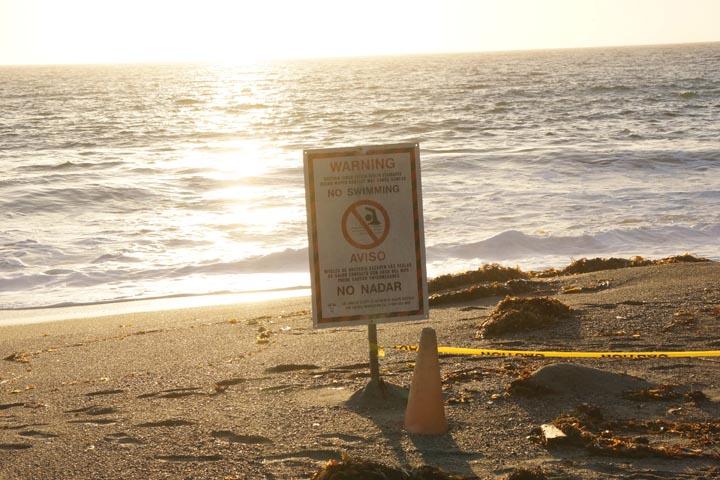 no-swim-sign-sunset