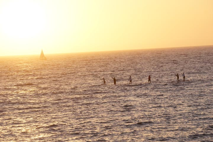 paddle-boarders-sailboat-sunset
