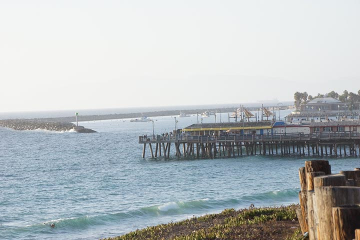 redondo-harbor-from-the-south