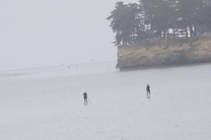 santa-cruz-paddleboarders