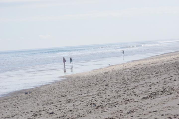 wellfleet-beach-cloudy