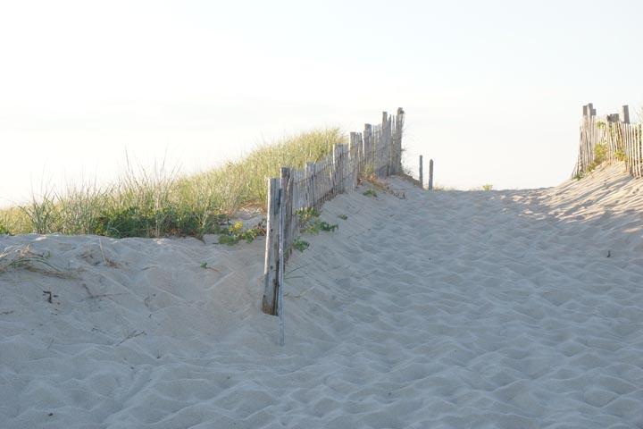 cape-cod-dune-provincetown