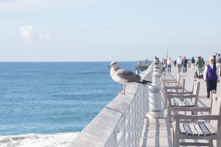 birds-eye-view-hermosa-pier