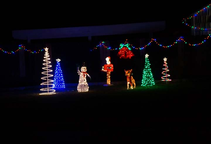holiday-lights-meadow