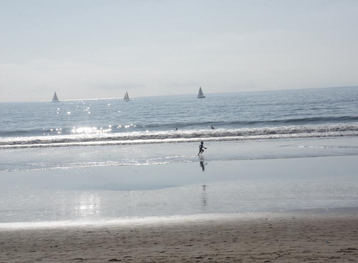 child-frolicking-sun-splashed-waters-ocean-park-santa-monica