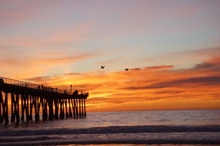 hermosa-vibrant-sunset-pelicans