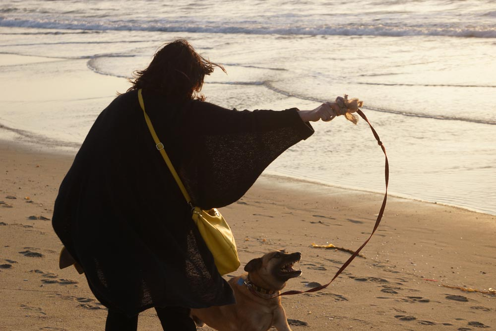 twirling-dervish-ada-rex-beach