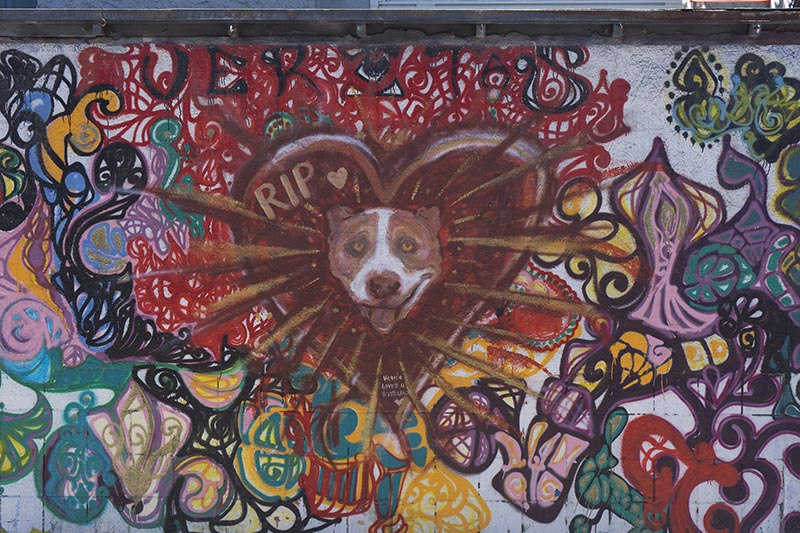 rip-venice-dog-mural
