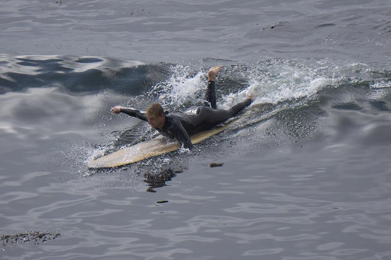 paddling-the-hook-santa-cruz