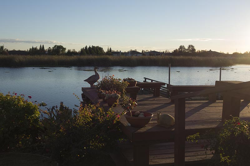 late-afternoon-delta-dock-nov