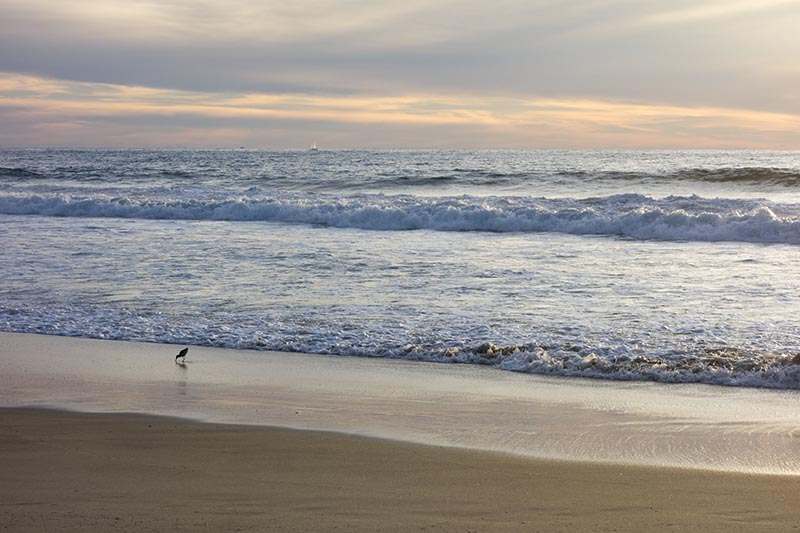 sandpiper-sailboat-near-sunset-hermosa-dec