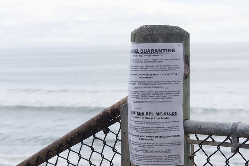 mussel-quarantine-near-mussel-shoals